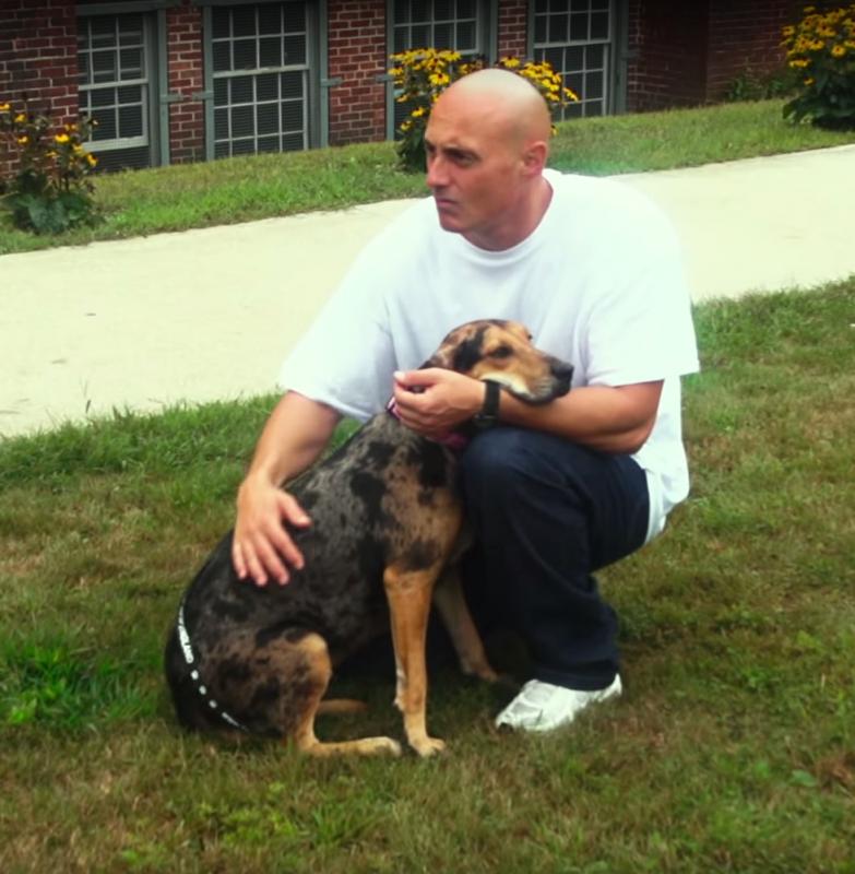 opuszczone psy i więźniowie (5)