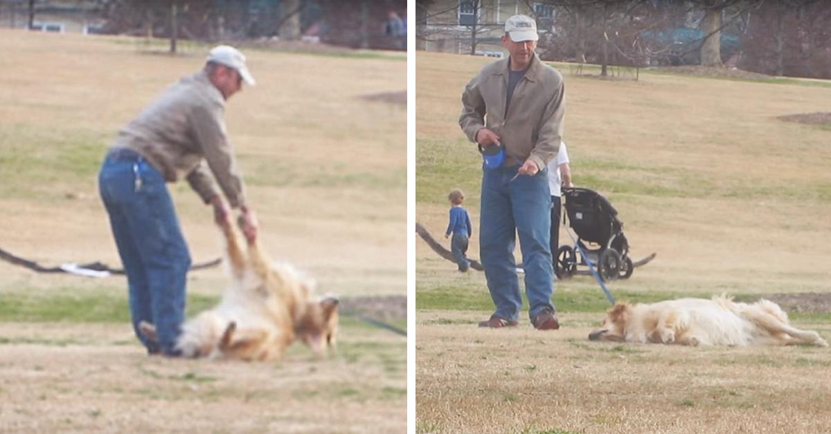 Udawał martwego, aby zostać dłużej w parku. Jego zachowanie bawi do łez