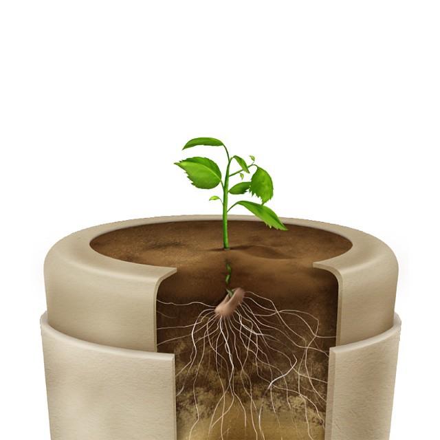 bio urny (6)