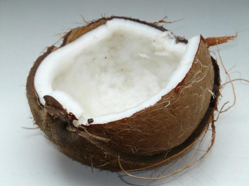 olej kokosowy rak jelita grubego (4)