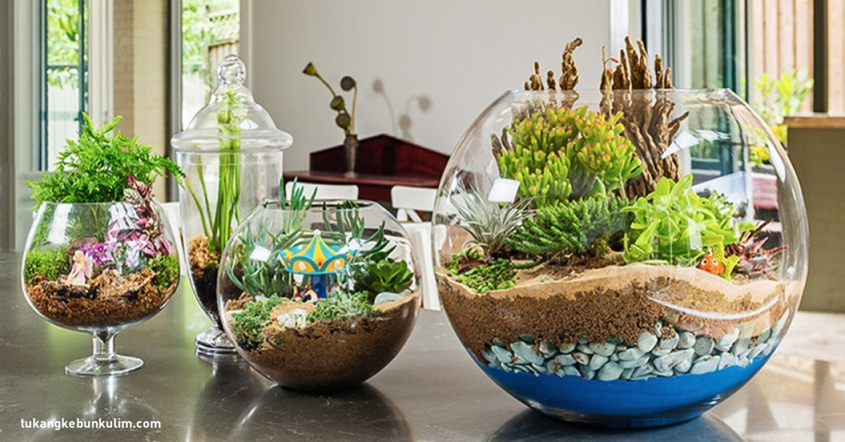 Ten projekt ogrodu na pewno Ci się spodoba. Wszystko co musisz zrobić to…