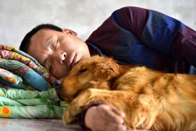 schronisko dla psow (5)
