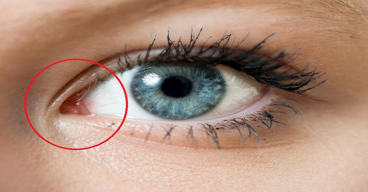 Jeśli kiedykolwiek zastanawialiście się po co nam wewnętrzny kącik oka, odpowiedź może zaskoczyć