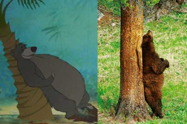 11 scen z bajek Disneya, które zostały zainspirowane prawdziwymi wydarzeniami. Musisz je zobaczyć!
