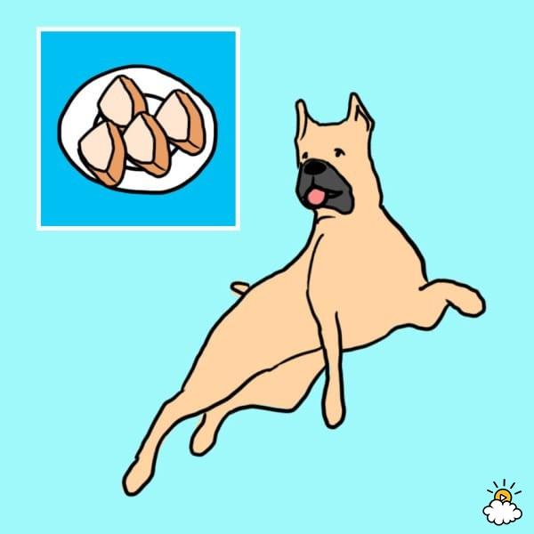 10 najzdrowszych produktów zjadanych przez ludzi, które bez wyrzutów sumienia można dać psu