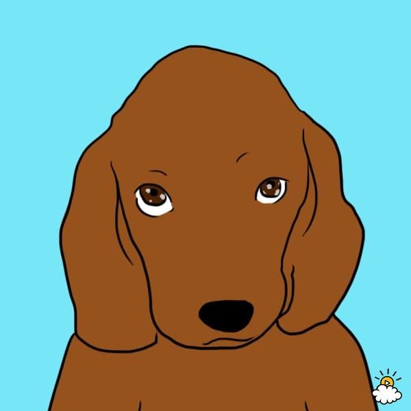 Jeśli Twój pies zawsze podąża za Tobą do łazienki, potajemnie chce powiedzieć Ci coś ważnego…