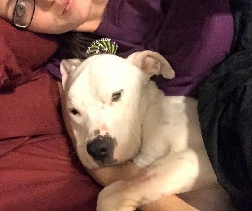 Przekazała psa znajomej, uważając że można jej ufać. Do tej pory się za to obwinia