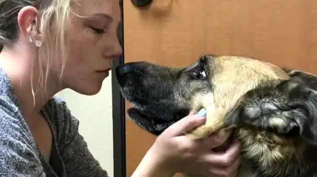 Dowiedzieli się, że ich pies ma guza mózgu. Postanowili, że jego ostatni dzień będzie wyjątkowy