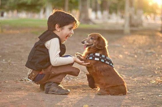 Adoptują szczeniaka zanim go zobaczą. Gdy drzwi auta się otwierają, nie mogą powstrzymać łez