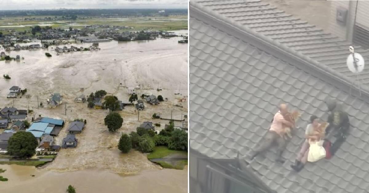 Para ucieka na dach z dwoma psami. Gdy podleciał helikopter, podjęli ważną decyzję