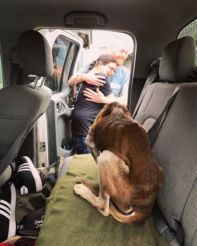 Usłyszała plotki o zagubionym w górach psie i chciała je sprawdzić. Okazały się prawdą