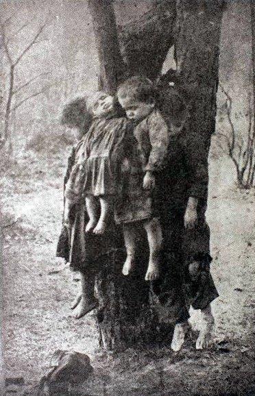 Zosia, Antoś, Bronia i Stefan zostali powieszeni w lesie na drzewie przez własną matkę