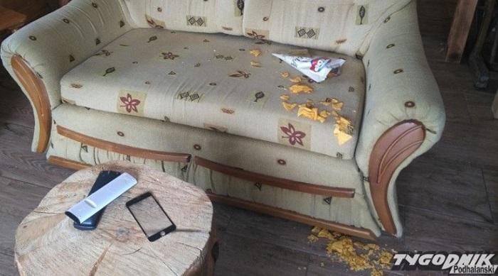 Wynajęły domek na urodziny koleżanki. Gdy właściciel wszedł do niego po imprezie, wkurzył się
