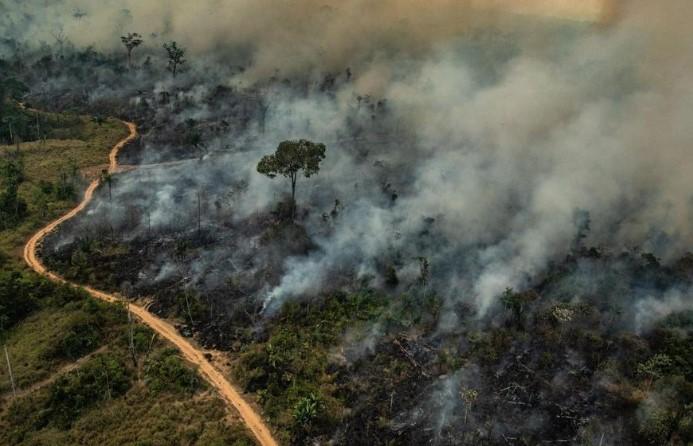 Rozszalały ogień w Amazonii