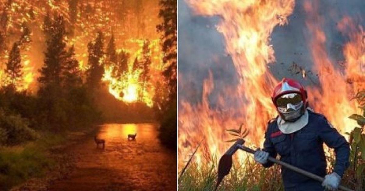 Tysiące żołnierzy gasi pożar lasu