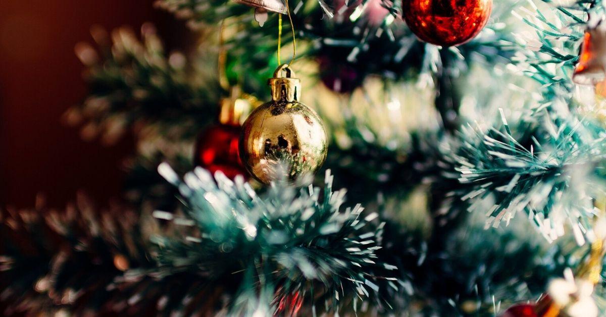 Zwierzęta w świątecznej dekoracji