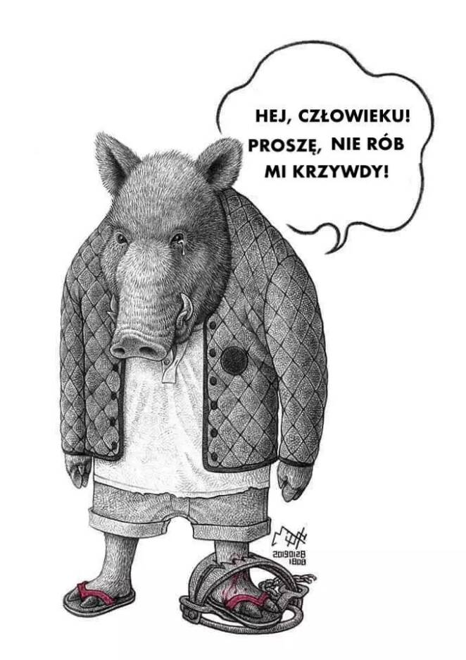 9 smutnych ilustracji zwierząt