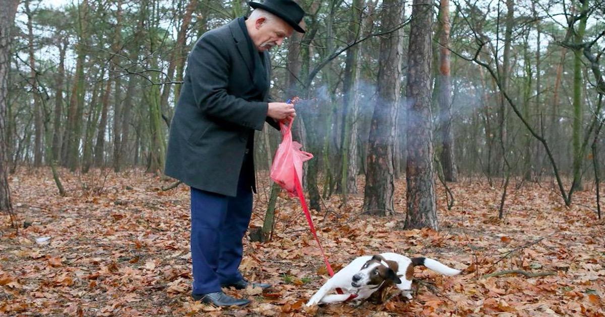 Korwin-Mikke odpala petardy przy psie