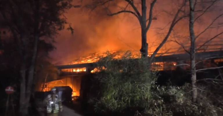 Pożar w zoo w Krefeld