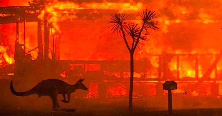 Polscy strażacy pojadą do Australii