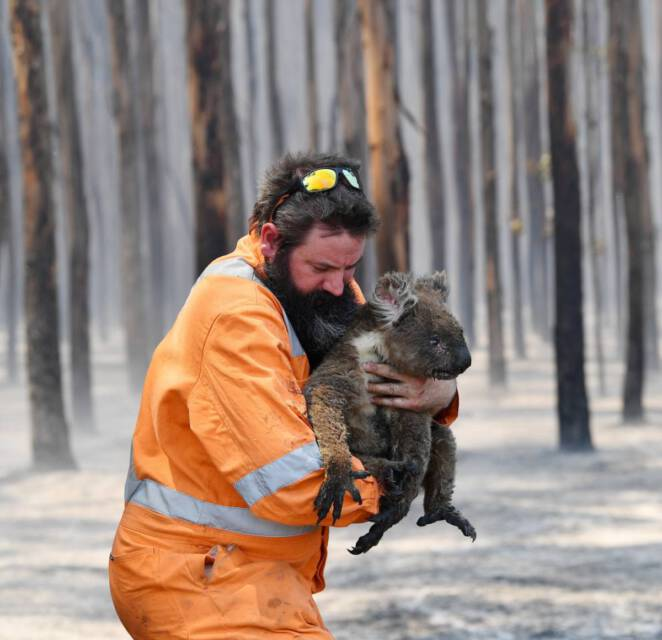 alternatywne teorie o pożarach w Australii 2