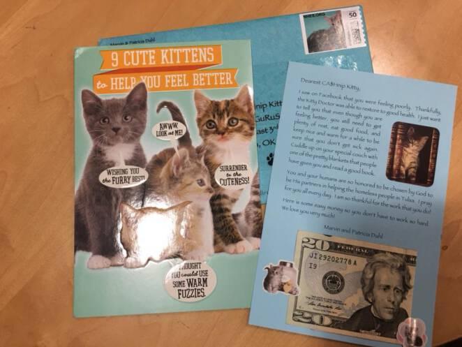 Kot przynosi pieniądze