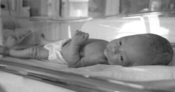śmierć w inkubatorze