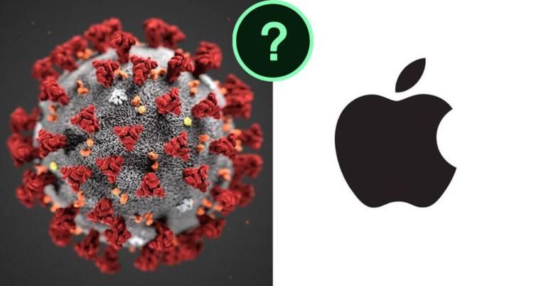 Apple odnotowuje straty
