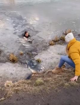 uratowała tonącego psa