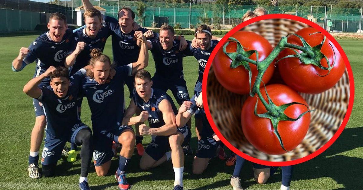 Piłkarze będą zbierać pomidory
