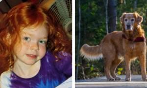 Suczka uratowała 4-letnią dziewczynkę, która przez dwa dni błąkała się w lesie