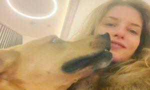 Aktorka pogryziona przez psa! Wzięła go ze schroniska i przeżyła koszmar