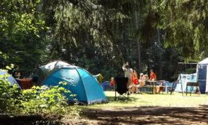 Obozy wakacyjne i kolonie w 2020 roku. Kto będzie mógł w nich uczestniczyć?