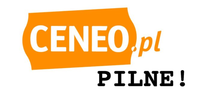 oferty CENEO