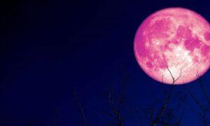 Pełnia truskawkowego Księżyca. To niezwykłe zjawisko zobaczymy już jutro!