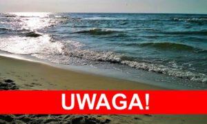 Masowe zakwity sinic nad Bałtykiem
