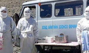 Epidemia dżumy w Mongolii. W regionie wprowadzono obowiązkową kwarantannę
