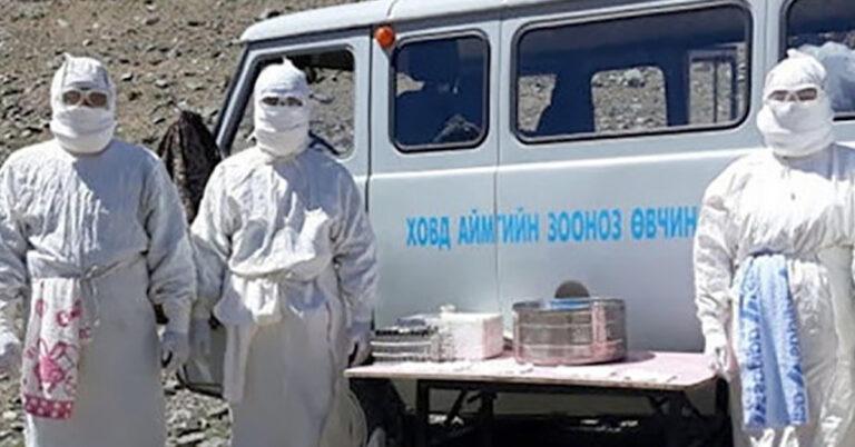 epidemia dżumy w Mongolii