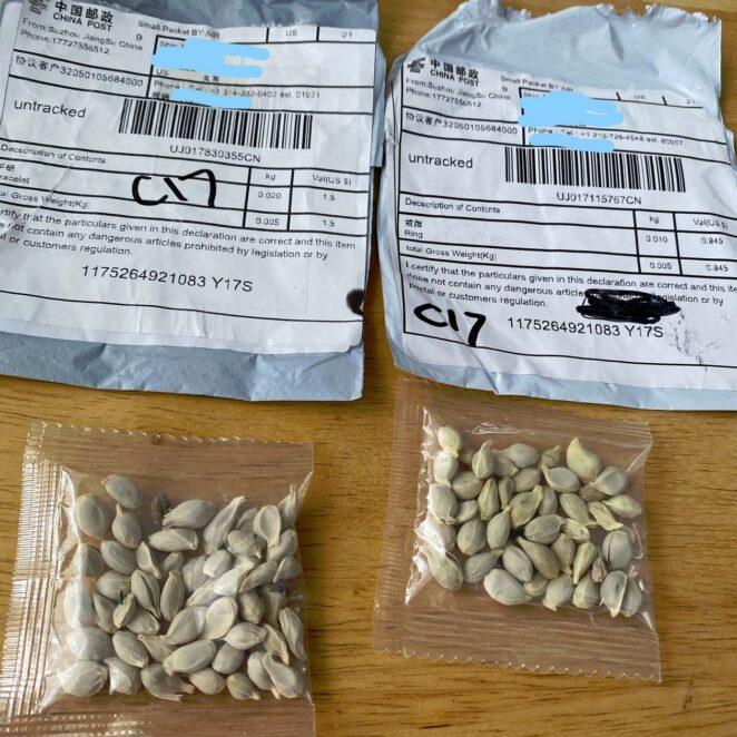 Tajemnicze przesyłki z nasionami z Chin