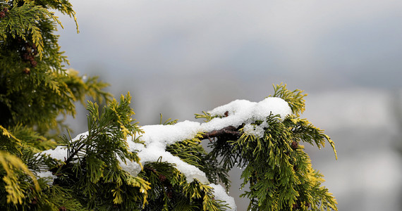 nadciąga zima 3
