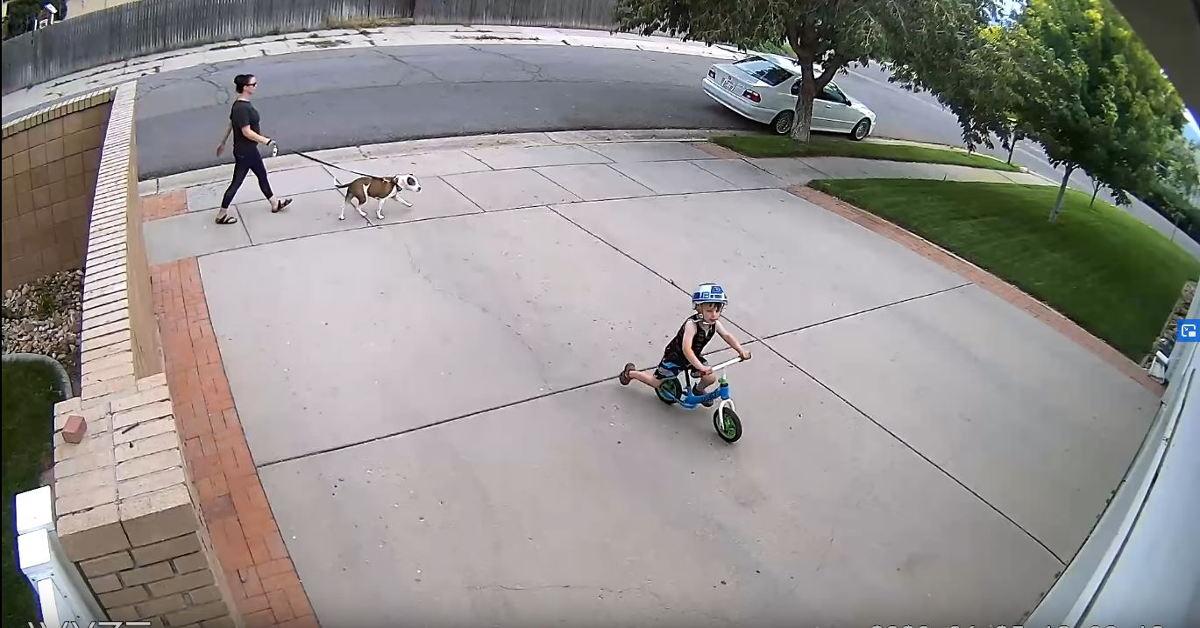 dziecko na podwórku