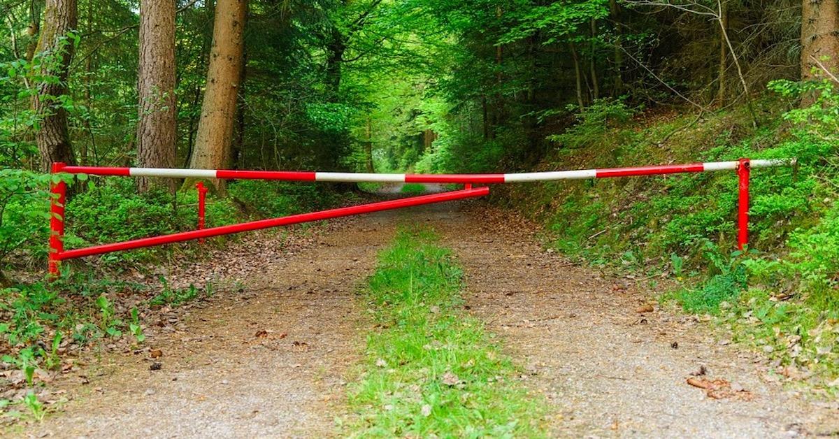 Zakaz wstępu do podwarszawskiego lasu