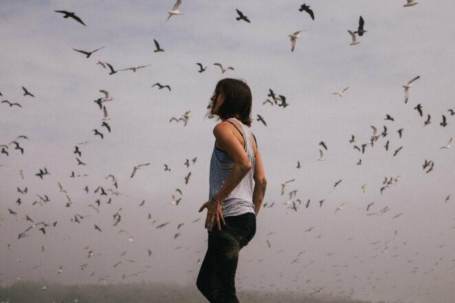 Zakażone ptaki lecą do Polski