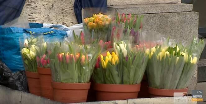 74-latka bez nogi sprzedaje kwiaty
