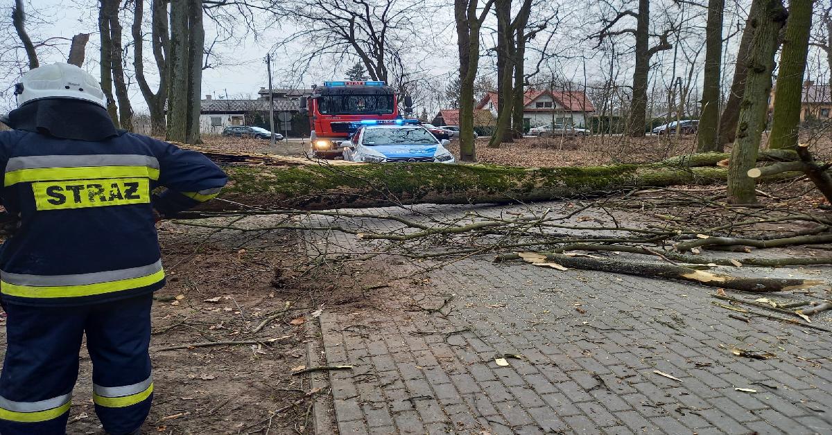 Tragiczny wypadek w Kujawsko-Pomorskiem