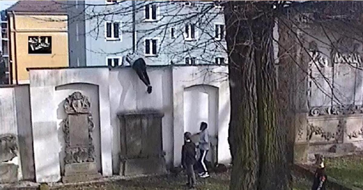 Niecodzienne harce w parku garnizonowym